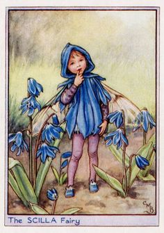 This beautiful Scilla Flower Fairy Vintage Print by Cicely Mary Barker was printed and is an original book plate from an early Flower Fairy book.Cicely Barker created 168 flower fairy illustrations in total for her many books. Cicely Mary Barker, Flower Fairies, Fairies Garden, Vintage Fairies, Vintage Flowers, Images Vintage, Vintage Cards, Fantasy Illustration, Garden Illustration