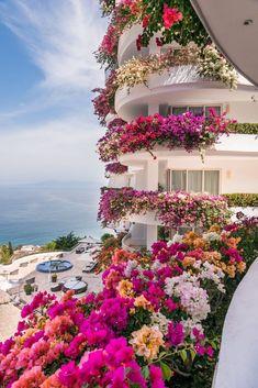 Home / Twitter Most Beautiful Gardens, Amazing Gardens, Beautiful Images, Beautiful Flowers, Buchart Gardens, Lisianthus Flowers, Flower Graphic, Amazing Buildings, Puerto Vallarta