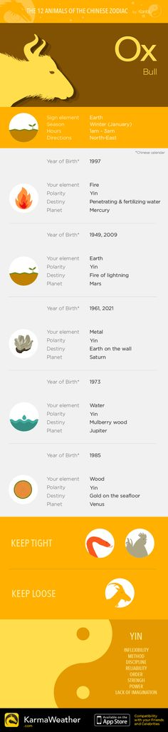 03937f5b6 Dragon — Infography and Chinese horoscope for your zodiac sign - Chinese  compatibility app for iPhone