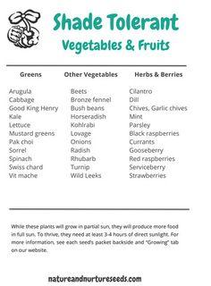 10 Shade Tolerant Root Vegetables #vegetable_gardening   Root Vegetables,  Vegetable Garden And Gardens