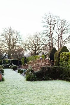 10 Things To Do in Your Garden in January. Petersham Nurseries Head of Horticulture on the planting tips and ideas for winter gardening and lawn care.