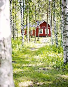 Finnish cottage and the summer light Foto Nature, Jigsaw, Summer Cabins, Red Cottage, Swedish Cottage, Forest Cottage, Cozy Cottage, Cabins And Cottages, Log Cabins