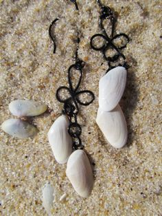 Seashell Jewelry Earrings Baby Clam Shell and by SeafarerJewelry