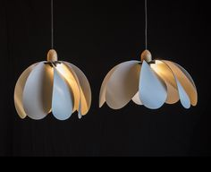 Tasmania By Hand – Pendant lights by Duncan Meerding • Available at thebigdesignmarket.com