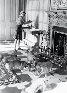 Elizabeth and the dogs during a summer holiday at Balmoral, 1976.