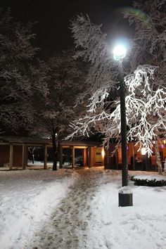 One light shines down on this snowy winter sidewalk on campus at Skidmore College in Saratoga Springs, NY.