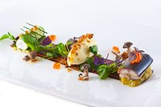 Eel - Chinese Mustard - Valrhona - Green Apple - Raddish L'art de dresser et présenter une assiette comme un chef de la gastronomie... > http://visionsgourmandes.com > http://www.facebook.com/VisionsGourmandes . #gastronomie #gastronomy #chef #presentation #presenter #decorer #plating #recette #food #dressage #assiette #artculinaire #culinaryart
