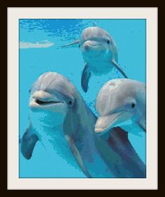 Happy Dolphins Cross Stitch Pattern by PhotoCrossStitch on Etsy