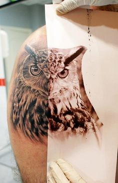 I don't know who is the artist, but that owl looks so real, check it out! #tattoo #tattoos #ink