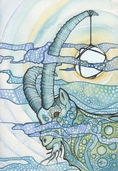 Animal Fragments by Tamara Phillips, via Behance