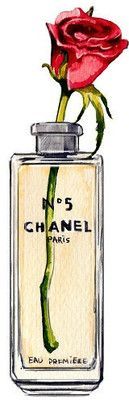 Chanel No 5 with Rose Perfume Watercolor Illustration