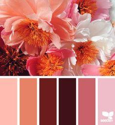 Barn tones | design seeds | Bloglovin'