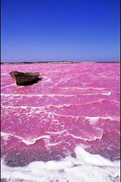 Lago rosa, Senegal  #HydrationInspiration #WhatsYourAmazing #SallyHershbergerHair