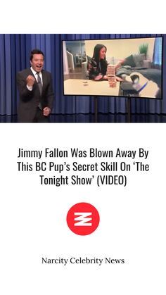 Click here👆👆👆 for the full article! Blown Away, Show Video, Tonight Show, Jimmy Fallon, Pup, Canada Travel, Public Transport, Celebrity News, Politics