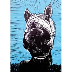 'Sky Blue Horse' by Printmaker Mary Collett.   Blank Art Cards By Green Pebble. www.greenpebble.co.uk