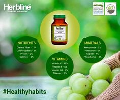 "Indian #Gooseberry or #Amla is derived from Sanskrit word ""Amalki"" which means ""nectar of life"" is a natural reservoir of nutrients, multivitamins and minerals. #Herbline has stored these goodness in the form of capsule which is 4X concentrated and easy to use. #Healthyhabits #madeinhimalayas"