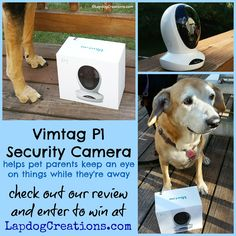Check out our #Vimtag security camera #review & enter for your chance to win one! ©LapdogCreations #sponsored