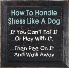 Funny quote about stress. For more hilarious quotes on life visit Dog Quotes, Funny Quotes, Dog Sayings, Sarcastic Quotes, Life Quotes, Quotable Quotes, Animal Sayings, Smart Sayings, Country Sayings