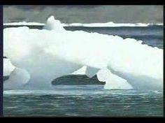 Antarctic Ice Melting at Tremendous Rate   Daily Two Cents