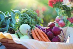 Sådan styrer du uden om forarbejdet mad og får rene måltider