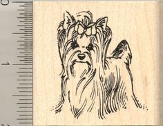 Yorkshire Terrier Rubber Stamps (RubberHedgehog.Com)