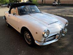 Alfa Romeo - Giulia Giulietta Spider 1600 - 1963