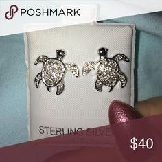 Turtle earnings Never worn Jewelry Earrings