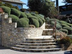 Walkway Ideas to Create Exquisite Curb Appeal - front yard landscaping ideas curb appeal Landscaping Supplies, Front Yard Landscaping, Backyard Landscaping, Landscaping Ideas, Landscaping Las Vegas, Landscaping Melbourne, Garden Pavers, Porch Steps, Cool Landscapes