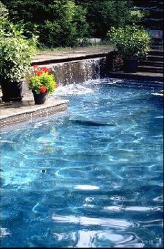 Pools shape and the stone on pinterest for Ab salon equipment clearwater fl