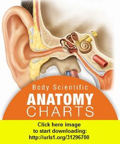 Ear Anatomy, iphone, ipad, ipod touch, itouch, itunes, appstore, torrent, downloads, rapidshare, megaupload, fileserve