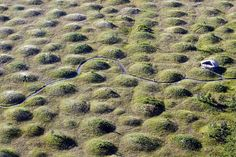 Mima Mounds - strange landscape formations in Washington State south of Olympia