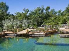 Piscine naturelle biologique et écologique, bassin de jardin aquatique et de baignade par Aquatiss