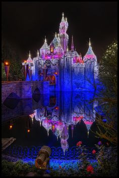 Disney Land Sleeping Beauty Castle for the holidays