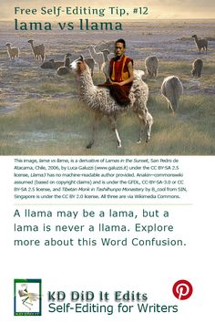 A Word Confusion post for self-editing writers who may ride a llama to meet a lama. Confusion, Writers, Writer, Authors, Author