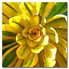 "Trademark Fine Art Amy Vangsgard ""Succulent Square VII"" Canvas Art in the Other Artwork category was listed for on 30 Apr at by PowerTraders in Johannesburg Framed Wall Art, Canvas Wall Art, Canvas Prints, Buy Prints, Framed Prints, Mellow Yellow, Yellow Art, Bright Yellow, Artist Canvas"