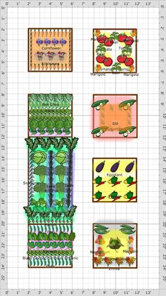 Garden Plan - 2013: 2013 raised beds