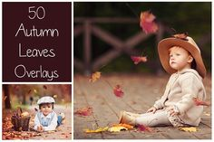 50+ Autumn Leaves Overlays by LovePhotoMoment on @creativemarket