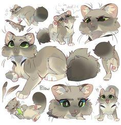Warrior Cats Comics, Warrior Cats Series, Warrior Cats Books, Warrior Cat Drawings, Warrior Cats Fan Art, Warrior Cats Art, Cute Animal Drawings, Animal Sketches, Cute Drawings