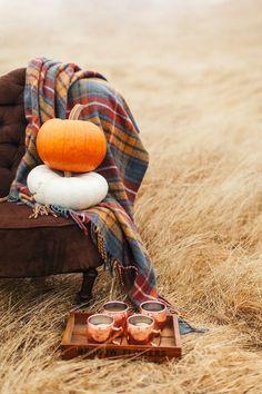 Autumn picnic #autumn #fall #pumpkins Color Splash, Color Pop, Black White Photos, 2 Colours, Monochrome, Fall Halloween, Karma, Nature, Black And White