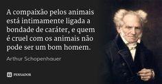 A compaixão pelos animais está intimamente ligada a bondade de caráter, e quem é cruel com os animais não pode ser um bom homem. — Arthur Schopenhauer