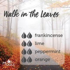 Try this diffuser blend to feel as though you are walking through the fall leaves all-year round! Young Essential Oils, Essential Oils Guide, Essential Oil Uses, Doterra Essential Oils, Essential Oil Combinations, Essential Oil Diffuser Blends, Young Living, Fall Leaves, Diffuser Recipes