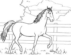 Horse Colouring In Farm Animal Coloring Pages, Colouring Pages, Coloring Books, Pencil Drawings Of Animals, Horse Drawings, Copic Drawings, Easy Drawings, Horse Outline, Insect Art