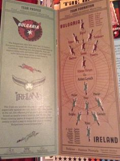 Quidditch World Cup Brochure from Behind the Scenes Book Hogwarts Letter, Irish, Harry Potter, Crafting, Lettering, Amazing, Books, Libros, Irish Language