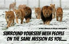 Surround Yourself With Those That Are On The Same Mission As You - The Good Survivalist
