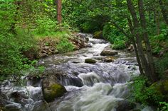 Ashland Creek, Ashland, Oregon