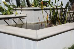 Bullnose tiles as a coping for a pond