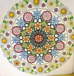 Johanna Basford Coloring Books Mandala Swallows The Secret Garden Gardens Crayon Art Vintage Pages