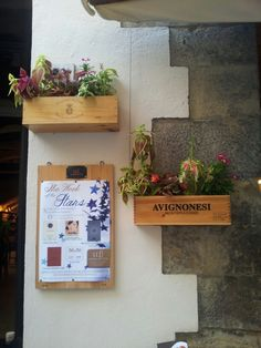 Flowerpots or winebox?  Live from Montepulciano!