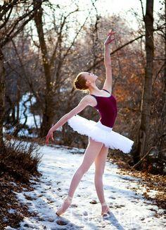 The Ballet Journal