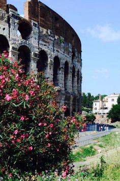 Roman Coliseum - Italy